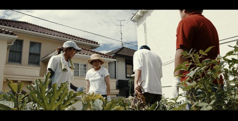 EAT LOCAL KOBE | ショートフィルム: KOBE URBAN FARMING