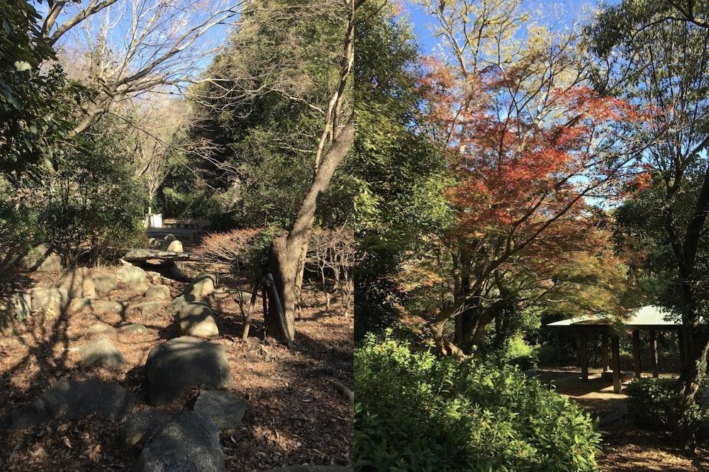 兵庫区山裾・平野エリアの公園で農園はじめます。