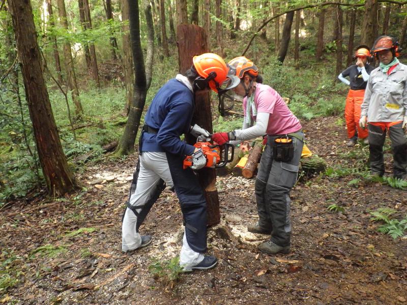 岐阜で林業を学ぶ。 40歳を過ぎた大きな決断。