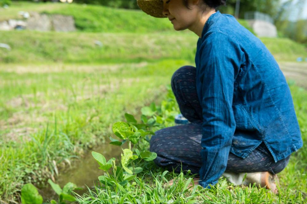 神戸の農村で、田植え体験の古民家宿泊ワークショップ 6/11-6/13