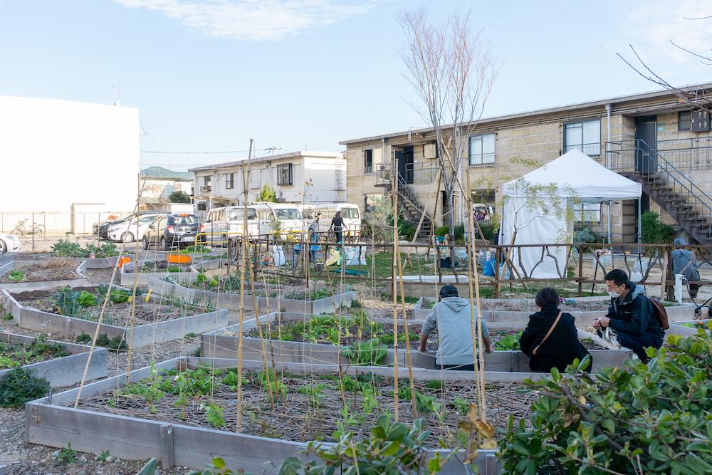 芦屋 CITY FARMに芽吹く子どもの個性。畑と英語の学童保育はじまりました。