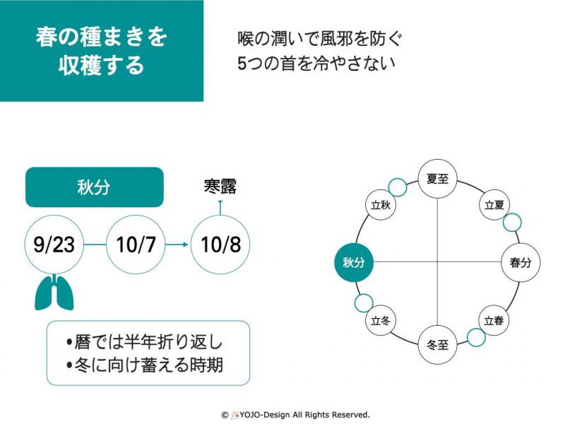 福井のみなみの季節と養生 #6/10月秋分「若狭町岩屋の梨」
