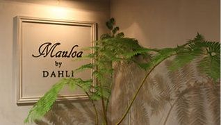 マウロアバイダリ(Mauloa by DAHLI)