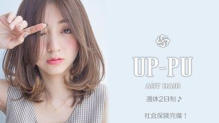 ART HAIR UP-PU