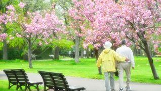 介護老人保健施設 菜の花