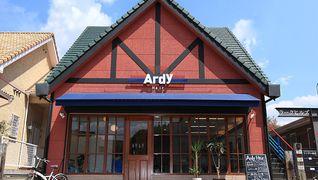 Ardy Hair