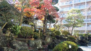 せらび芦花公園