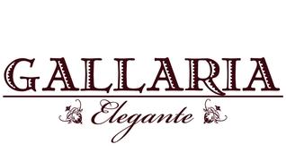 GALLARIA Elegante 稲沢店
