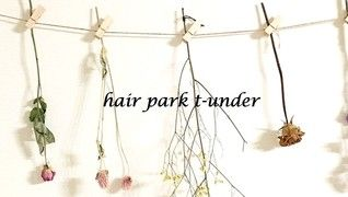 hair park  t-under