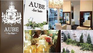 AUBE for hair