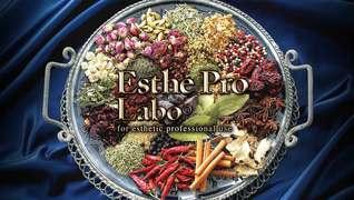 Esthe Pro Labo(エステプロラボ)平岡店