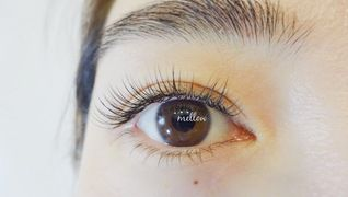 mellow eyelash
