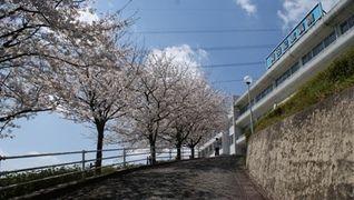 和田記念病院