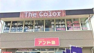 オーガニックカラー専門店 The Color