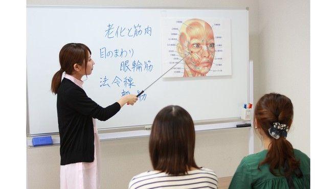 すてらめいとジャパン ビューティーアドバイザー募集(ステラメイト)