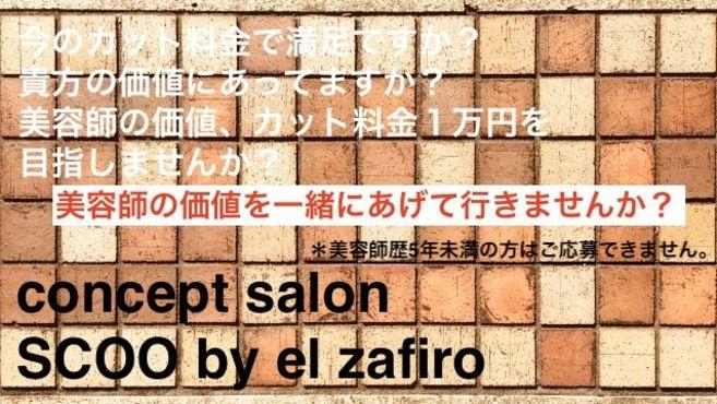 concept salon SCOO by el zafiro