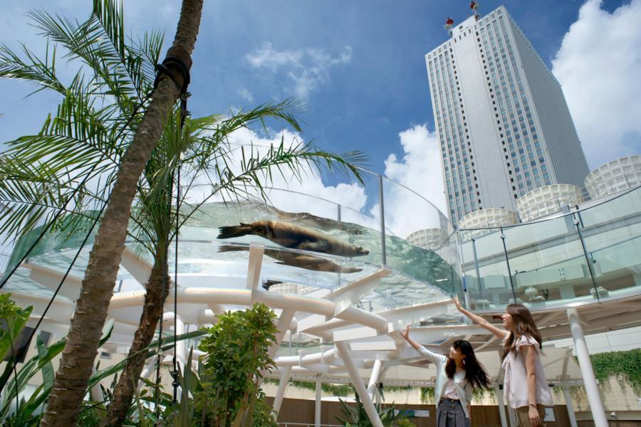 Image result for sunshine aquarium ikebukuro