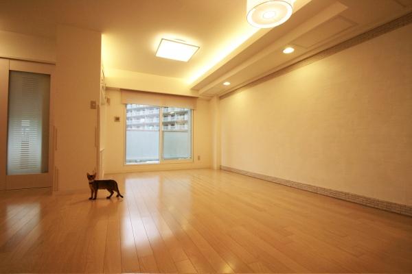 施主自らタイルと漆喰を施工した愛猫と暮らすナチュラルな空間