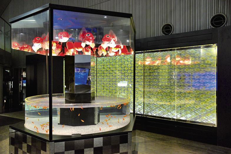 日本最大級の金魚展示エリアの江戸リウム/すみだ水族館(東京都/墨田区)