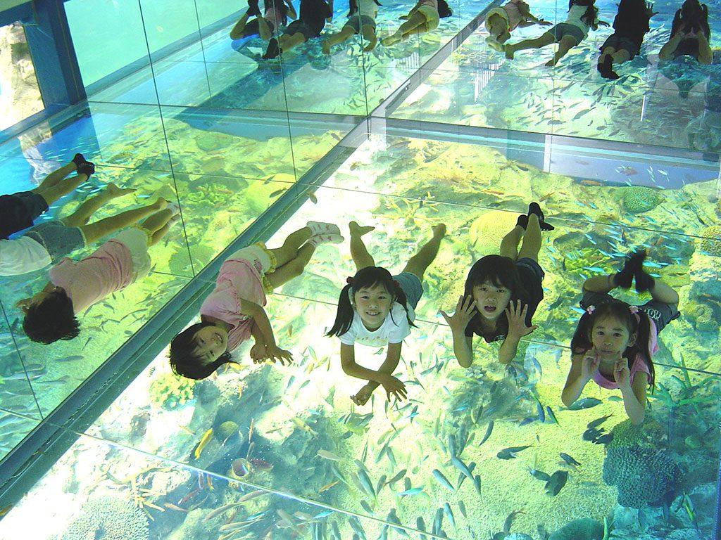 越前松島水族館(福井県坂井市)