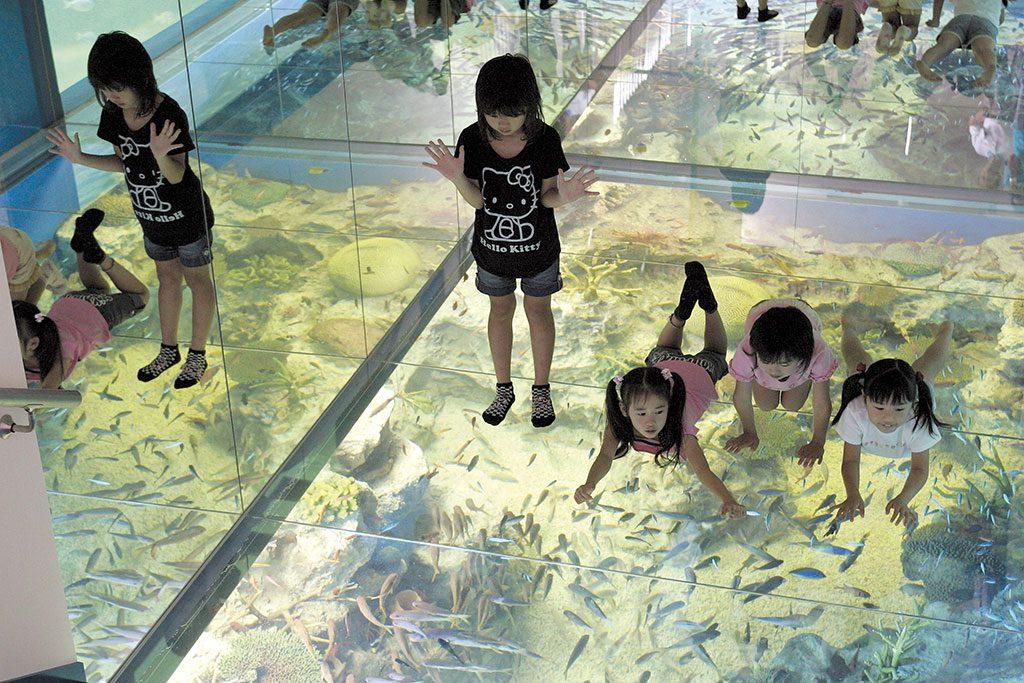 水面がガラス張りの水槽「さんごの海」の上に寝転ぶ子どもたち/越前松島水族館(福井県坂井市)