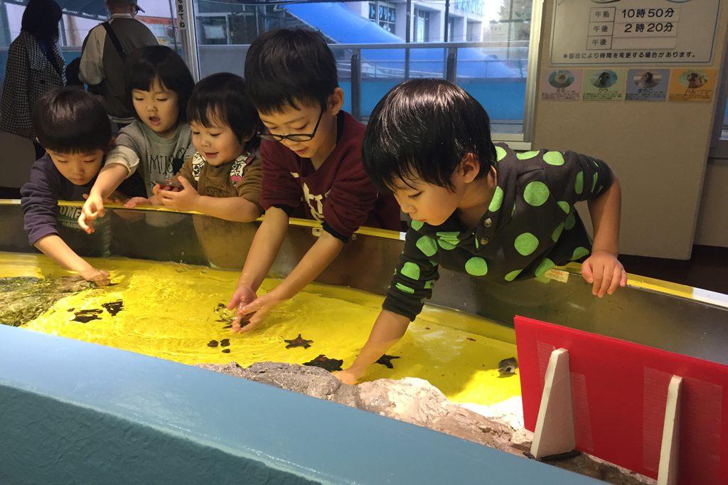 ヒトデや貝とふれあう子どもたち/魚津水族館(富山県魚津市)