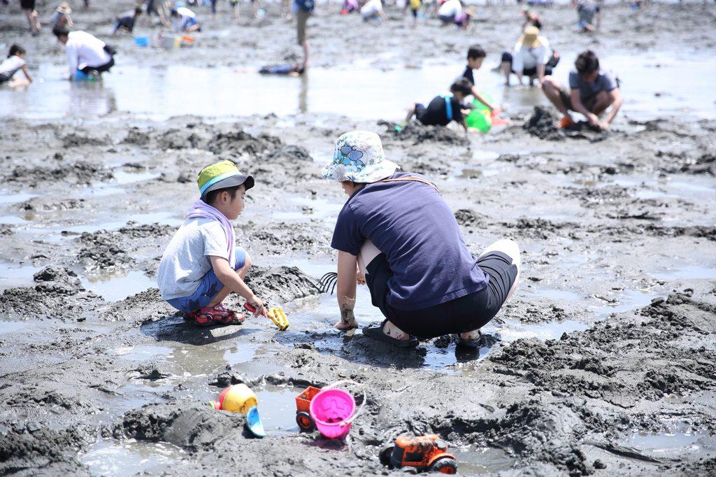 茨城県の潮干狩り場(2021)入場無料でハマグリなど自然の貝を探そう