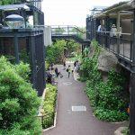 福岡市動植物園は、動物のエサやり体験から珍しい植物観察まで楽しみがいっぱい!