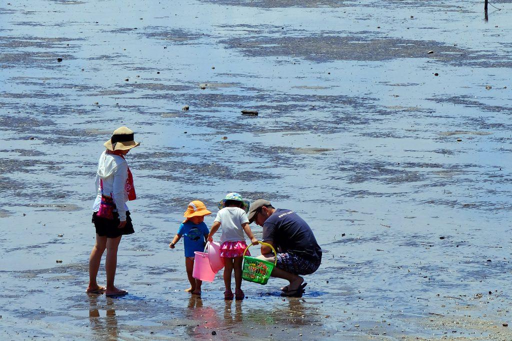 愛知県(蒲郡・西尾・知多半島・渥美半島)のおすすめ潮干狩りスポット