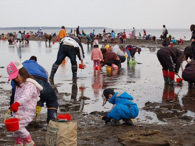北海道のおすすめ潮干狩り場(2021)女満別湖のシジミ、能取湖のアサリなど