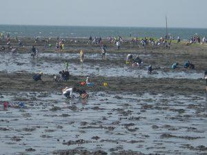3~5月がおすすめ!九州の潮干狩りスポット(福岡・熊本・大分・宮崎…)