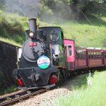 蒸気機関車に乗れる!愛知こどもの国(西尾市)は、屋内も屋外も遊び場がいっぱい