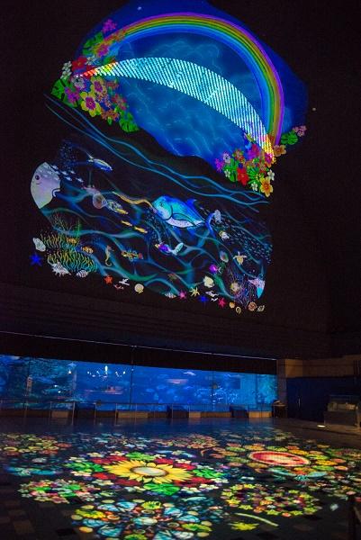 2019年夏のライトアップイベント/須磨海浜水族園(兵庫県神戸市)