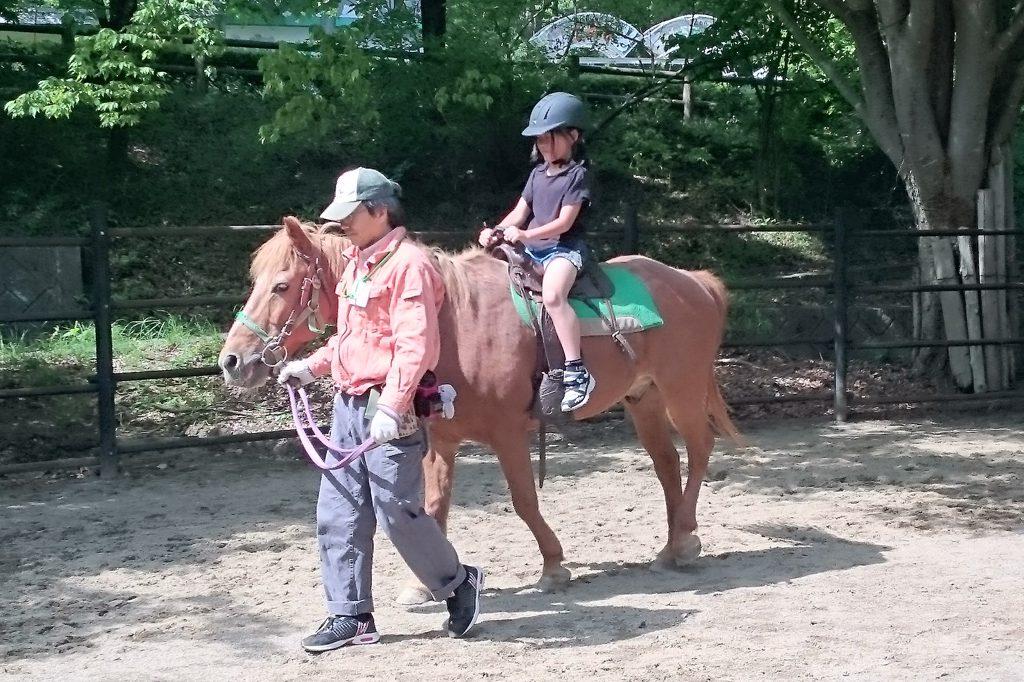 無料でポニーの乗馬体験ができる「アニマルライドコーナー」/盛岡市動物公園(岩手県/盛岡市)