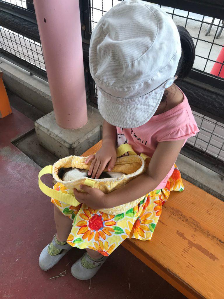 ふれあいハウス」でモルモットとふれあう様子/須坂市動物園(長野県/須坂市)