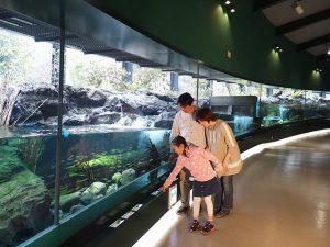 魚にふれながらエサやり?! 相模川ふれあい科学館は、ユニークな体験がある水族館