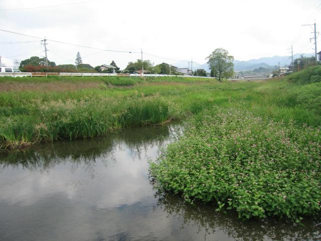 黒川(福岡県/北九州市八幡西区)