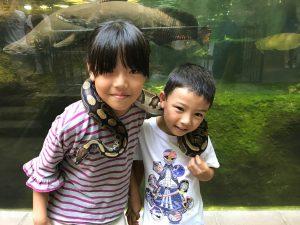 昆虫や爬虫類も人気!足立区生物園(東京)で300種類の動物を観察しよう