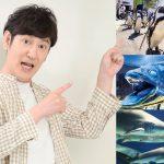 ココリコ田中さんに聞く(3) ボクの大好き&おすすめ水族館7選