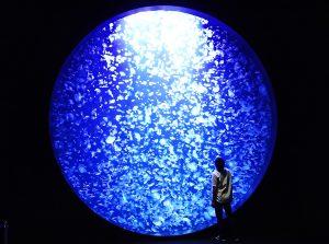 東北のおすすめ水族館8選!クラゲの世界やふれあい・体験が大人気