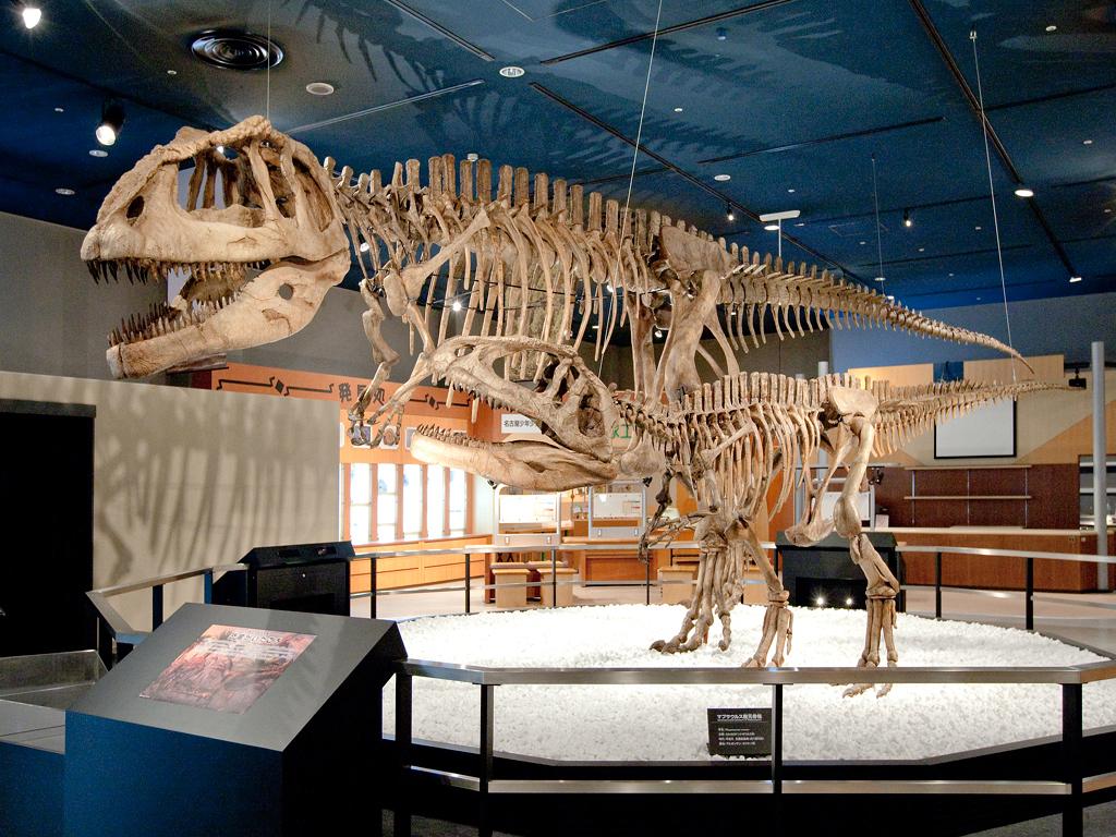大迫力の恐竜の全身骨格/名古屋市科学館(愛知県)