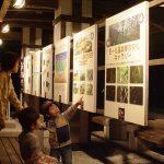 ホタル祭りも!北海道・東北のホタル観賞スポット2019