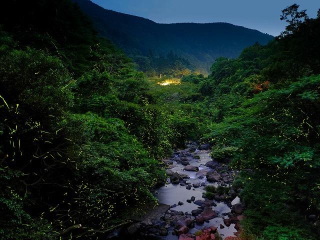 嬉野温泉(佐賀県/嬉野市)