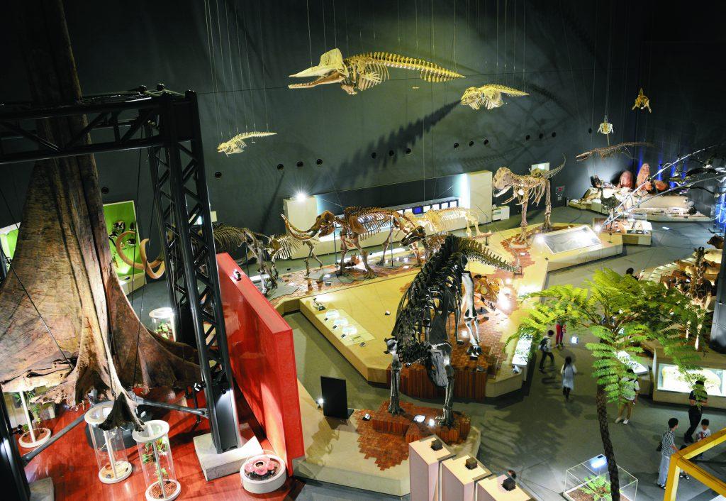 恐竜骨格標本などの展示場/神奈川県立生命の星・地球博物館(小田原市)