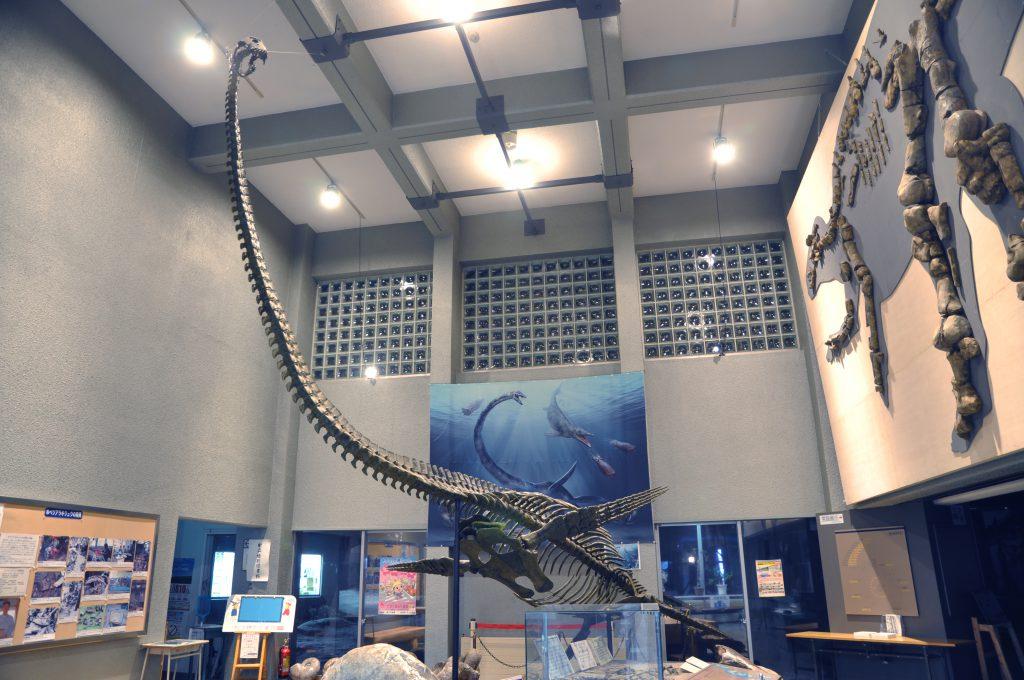 ホベツアラキリュウ全身復元骨格と「むかわ竜」全身骨格レリーフ/むかわ町穂別博物館(北海道/むかわ町)