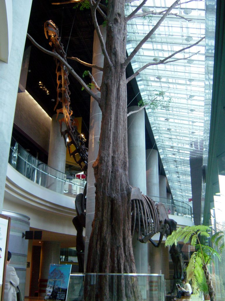 ヌオエロサウルス全身骨格/ミュージアムパーク茨城県自然博物館(茨城県/坂東市)