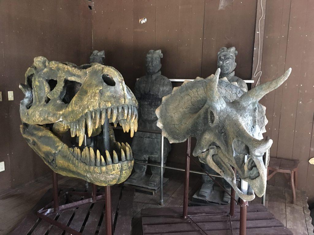 ティラノサウルスなどの化石(レプリカ)/くるくまの森ガーデンハウス(沖縄県/南城市)