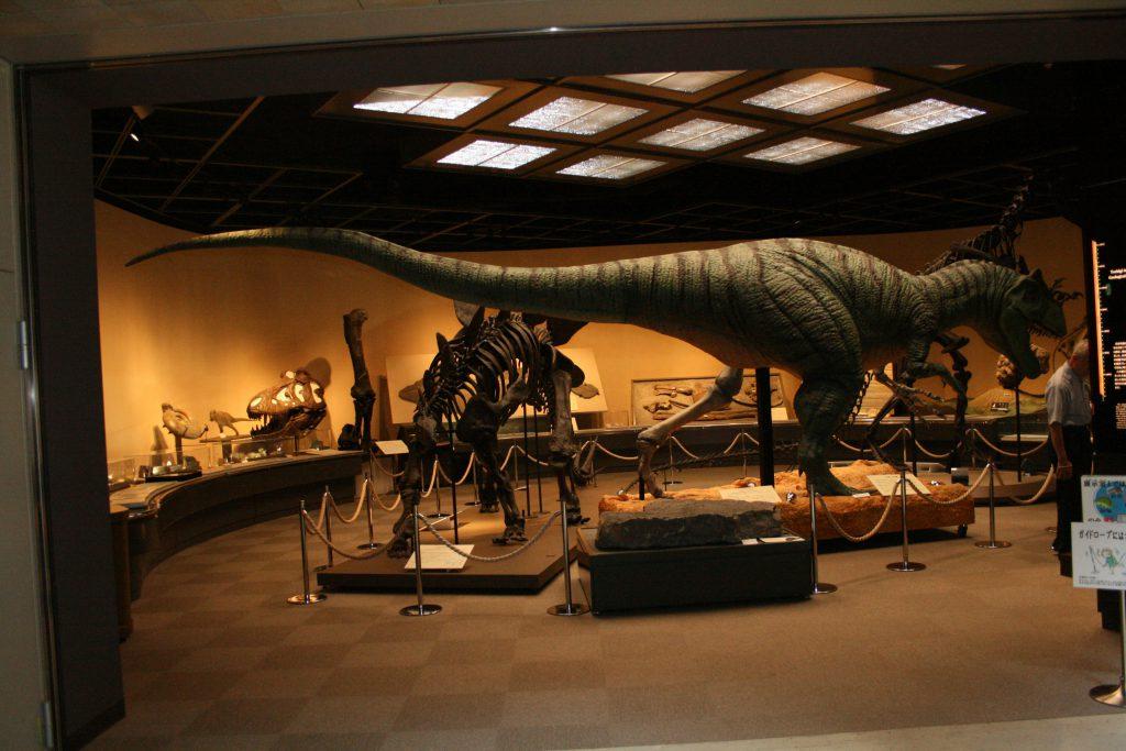 全身骨格標本や復元模型など展示室全景/栃木県立博物館(栃木県/宇都宮市)