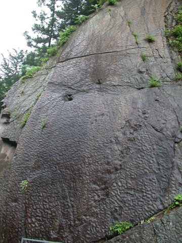 崖にある約50個の恐竜の足跡/瀬林の漣痕(恐竜の足跡)(群馬県/神流町)