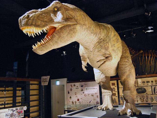 ティラノサウルスの復元模型/富山市科学博物館(富山県/富山市)